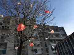 Podgorica Tüten vor Fassade