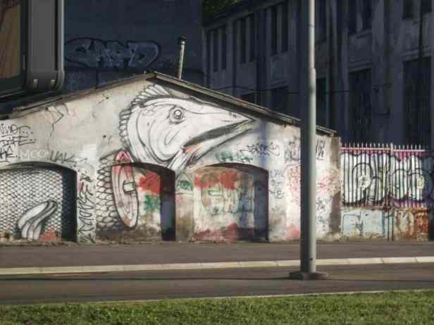 BG Streetart neu Vogel