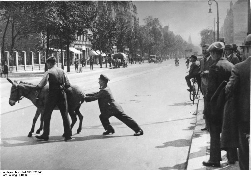 Berlin, störrischer Esel
